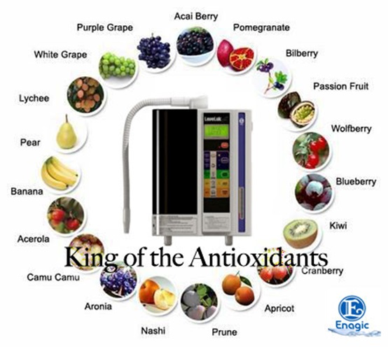 antioxidants circle